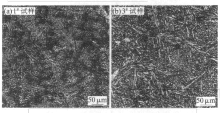 Fig.2 Microstructure of as-cast sample No.#1 and #3